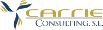 carrie consulting logo